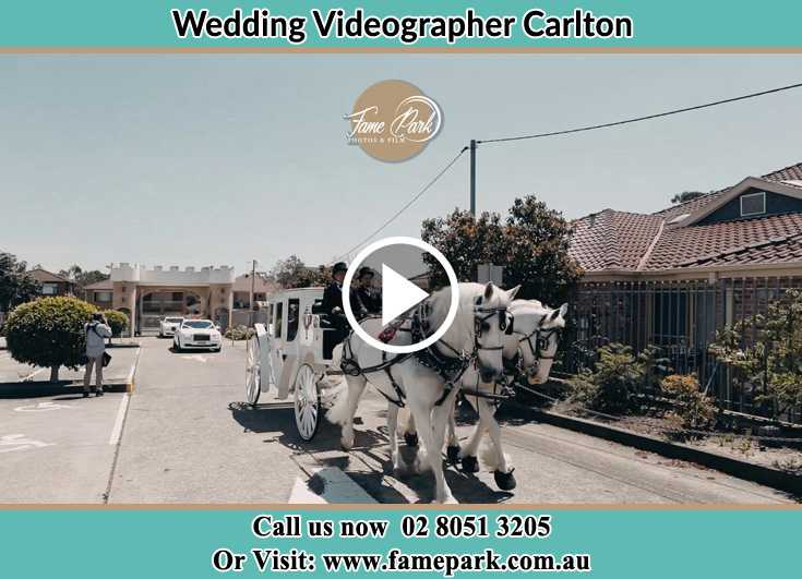 Bride and Groom wedding carriage Carlton NSW 2218